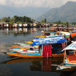 Shikara boats on Dal Lake with houseboats in Srinagar — Stock Photo