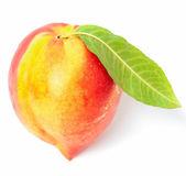 One nectarine fruit — Стоковое фото