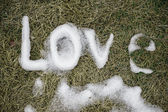 Love. Message made of snow. — Stock Photo