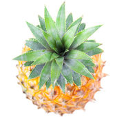 Top of Ripe Pineapple — Stock Photo