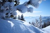 Winter Alps, christmas — Stock Photo