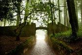 Sintra, Portugal, Pena Palace, magic palace and park — Stock Photo