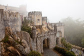Park of the Pena palace, the fabulous alley in foggy weather, sintra, portugal — Stock Photo
