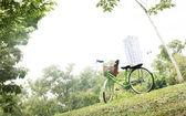 Vintage bicycle in a park — Stock fotografie