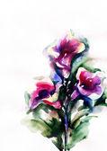Flowers .watercolor illustration — Stock Photo