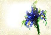Flowers .watercolor illustration — Stock fotografie