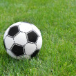 Soccer ball on green grass — Stock Photo #13961361