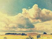 字段和复古的天空 — 图库照片