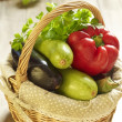 Basket of fresh vegetables — Stock Photo #22512895