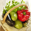 Basket of fresh vegetables — Stock Photo #22763884