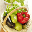Basket of fresh vegetables — Stock Photo #24215749