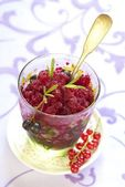 Black and red currant sorbet — Stock Photo