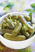 Pickled cucumbers in white bowl — Stock Photo