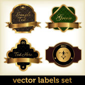 Vector labels set — Stock Vector