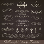 Calligraphic design elements - dark background — Stock Vector