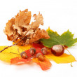 Colorful autumn leaves chestnuts and acorn on white — Stock Photo