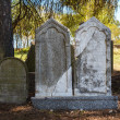 Stock Photo: Forgotten and unkempt Jewish cemetery with strangers