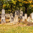 Forgotten and unkempt Jewish cemetery with the strangers — Foto Stock
