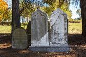 Cimetière juif oublié et négligé avec les étrangers — Photo
