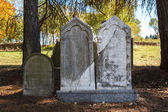 Forgotten and unkempt Jewish cemetery with the strangers — Stok fotoğraf