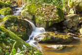 Falls on the small mountain river in a wood shooted in autumn — Stock Photo