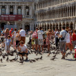 16. Jul 2012 - with pigeons in San Marco Plaza 3 in Venice, Italy — Stock Photo #13825095