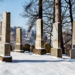 Foto Stock: Forgotten and unkempt Jewish cemetery with strangers