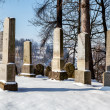 Forgotten and unkempt Jewish cemetery with the strangers — Стоковая фотография