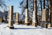 Forgotten and unkempt Jewish cemetery with the strangers — Zdjęcie stockowe