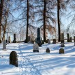 Forgotten and unkempt Jewish cemetery with the strangers — Stock Photo