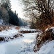 Sunny morning in winter landscape — Stock Photo #14079684