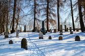 Vergeten en onverzorgde joodse begraafplaats met de vreemdelingen — Stockfoto