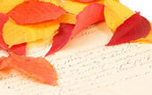 Handwritten letter with autumn leaves — ストック写真