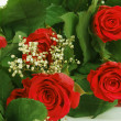 Bouquet of fresh red roses on white — Stock Photo #16624157