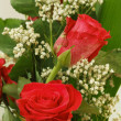 Stock Photo: Bouquet of fresh red roses on white