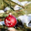 Christmas balls on outdoor snowy tree — Stock Photo #16893791