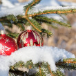 Christmas balls on outdoor snowy tree — Stock Photo #17417027