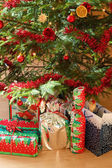 Detail of gifts under decorated christmas tree — ストック写真