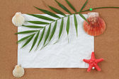 Background with blank crumpled paper, seashells, palm leave and seashell — Stock Photo