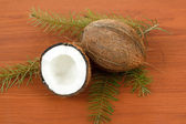 Coconut with pine twig on a wooden background — Stock Photo