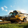 Yellov combine on field harvesting gold wheat — Stock Photo