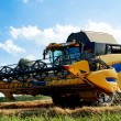 Stock Photo: Yellov harvester on field harvesting gold wheat