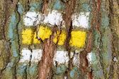 Tree bark texture with turistic sign — Stockfoto