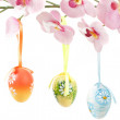Hanged bright color easter eggs with bows on spring flower — Stock Photo