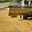 Stock Photo: Yellow harvester combine on field harvesting gold wheat