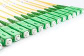 Zielony włókna światłowodowe sc złącza — Zdjęcie stockowe