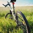 Bike parked in meadow — Stock Photo #26755639