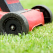 Lawnmower on grass — Stockfoto #26865467