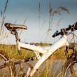 Stock Photo: Bike parked in meadow