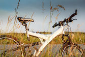 Bike parked in a meadow — Stock Photo